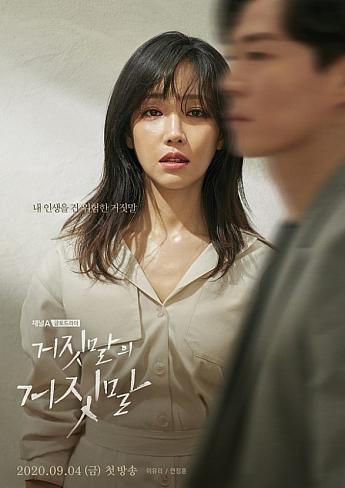 韓国 あらすじ 秘密 と 嘘 ドラマ